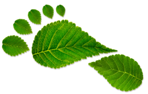 Reduce your carbon footprint